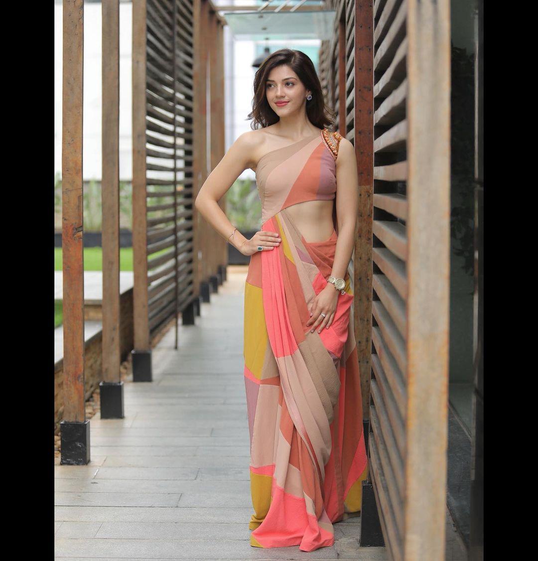 Beautiful actress Mehreen Pirzada in multi color pre drape saree.  2021-08-18